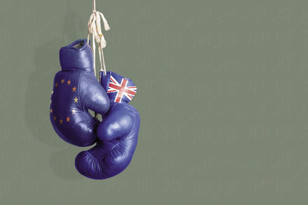 EU boxing gloves