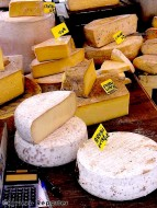 Cheese on the French Riviera