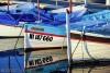 "Local ""pointu"" fishing boats"